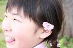 桜咲く5.8.JPG